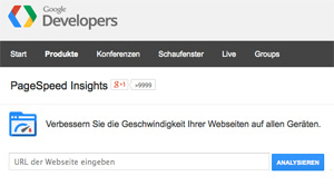 PageSpeed Insights - Screenshot