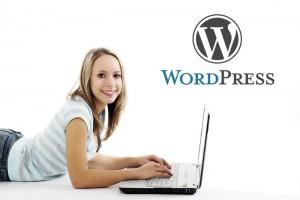 Wordpress Dienstleister
